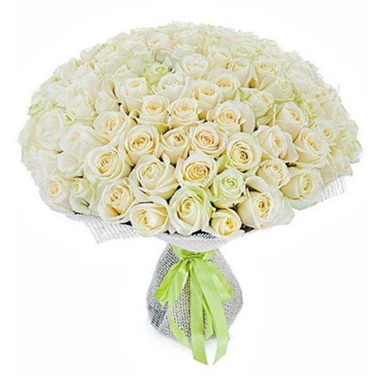 Алматы, купить букет белых роз фото вк